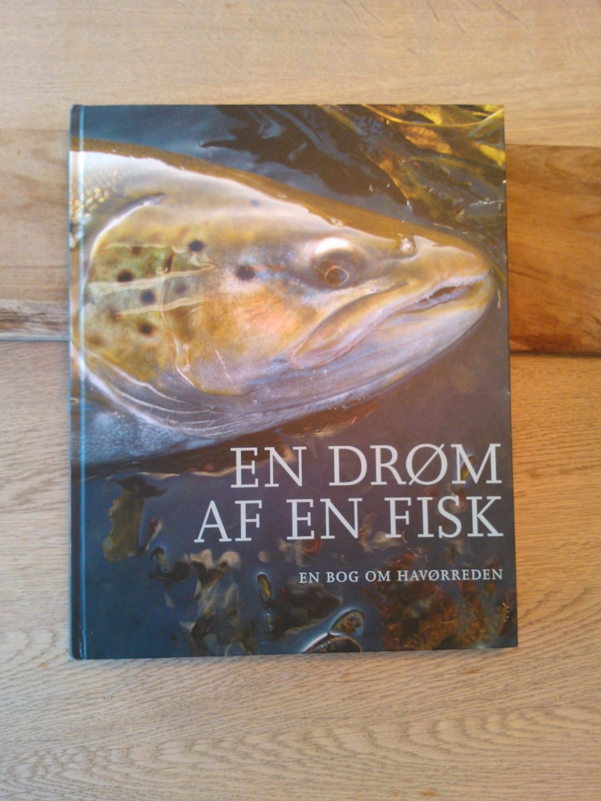 En dröm af en fisk