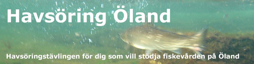 Havsöring Öland